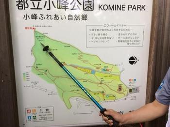 小峰公園.jpg