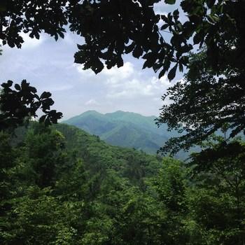 山々登山道.jpg