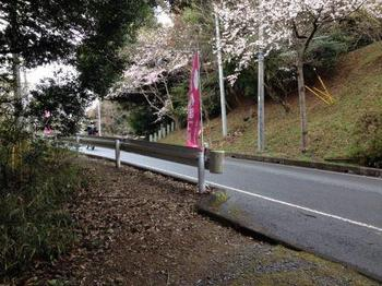 横断2.jpg