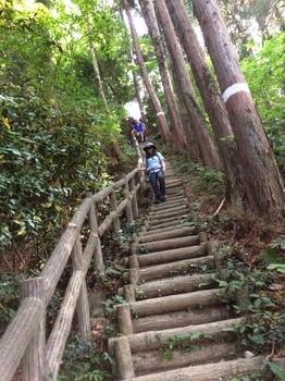 小峰公園階段.jpg