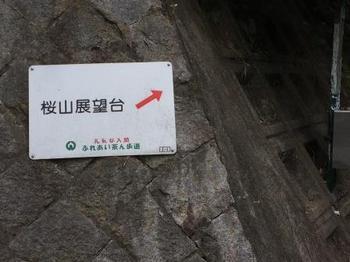 桜山案内.jpg